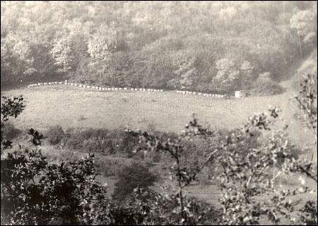 1978 septembr stupi la padurea Ciunga 1 prelw
